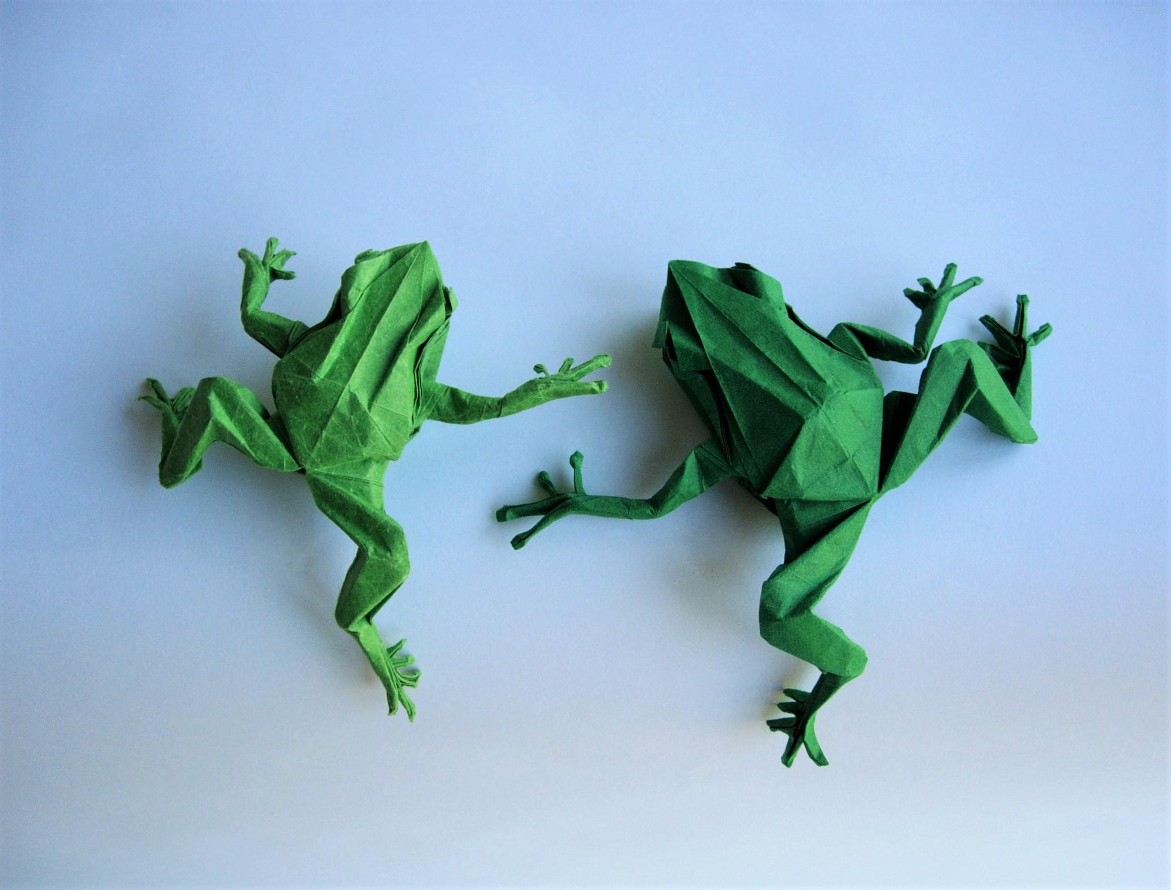 Maximilian Purewal - Origami Frogs
